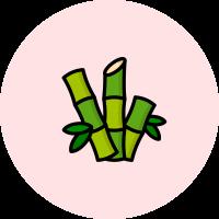 icona2